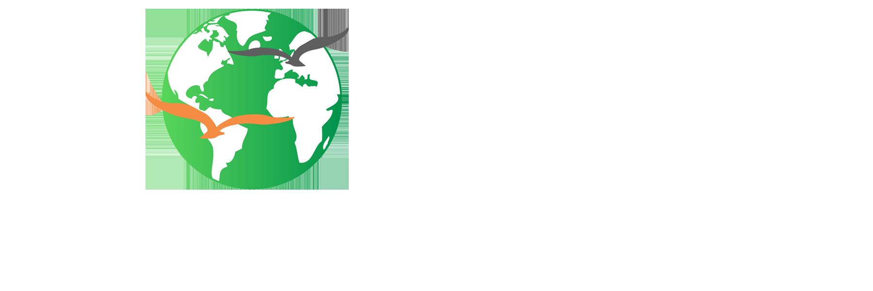 MIS Consultants